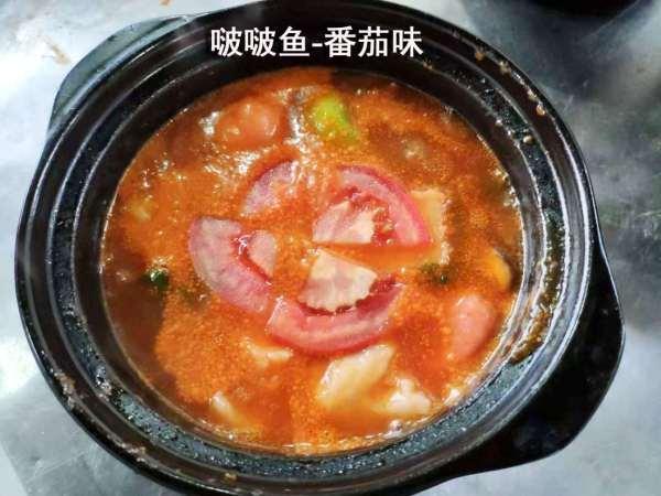 特色烤鱼饭晋城培训学校哪里能学到