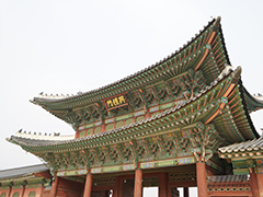 韩国大学的介绍2