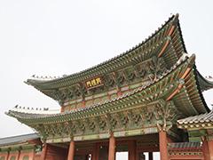 在韩过留学的一些小建议